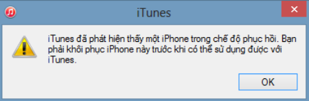 Click OK khi nhận được thông báo đã phát hiện iTunes trên iPad