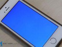 sửa iphone bị màn hình xanh